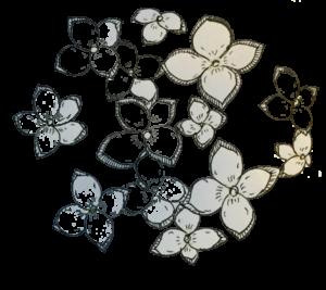 紫陽花 イメージ3