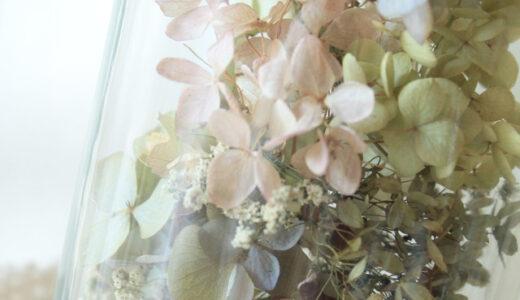 紫陽花のドライフラワーはどこで買うべき?おすすめの通販・販売場所