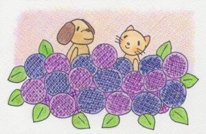 犬猫と紫陽花のイラスト