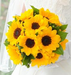 ひまわりの花束・切り花をプレゼント!値段の相場と長持ちさせる方法