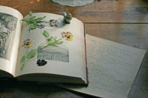 押し花作りのイメージ写真