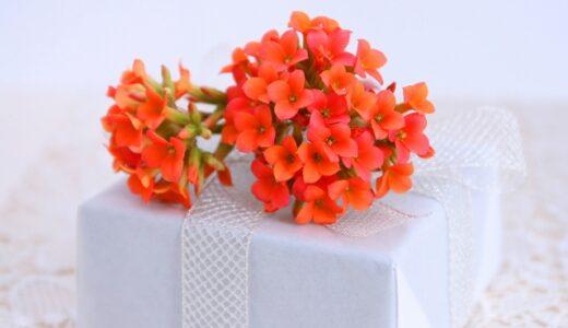 カランコエの花言葉!色別の意味や由来を紹介!