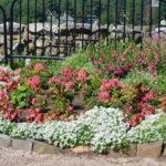 花壇のレイアウト・花の配置まとめ!綺麗な花壇のデザイン例