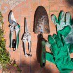 剪定鋏の研ぎ方解説!手入れに必要な道具と長持ちする使い方