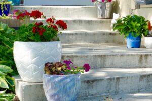 色々な植木鉢