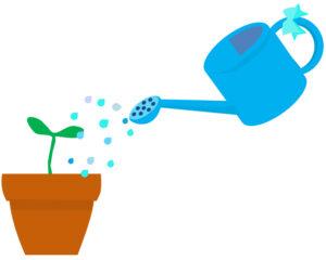 水やりと肥料をあげるイメージ