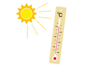 シクラメンと温度管理