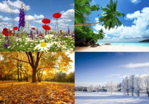四季の写真のコラージュ