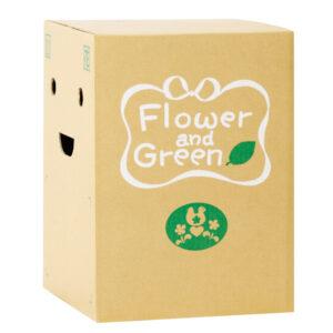 花を輸送する時の段ボール箱