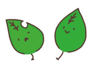 桜の病害虫のイメージ