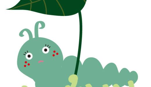桜の病気・害虫駆除まとめ!原因と症状、それぞれの対策法は?