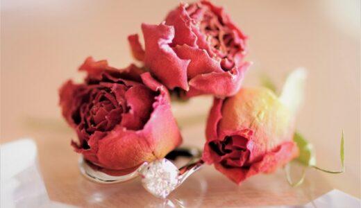 バラのドライフラワーの作り方&飾り方!失敗しないコツは?